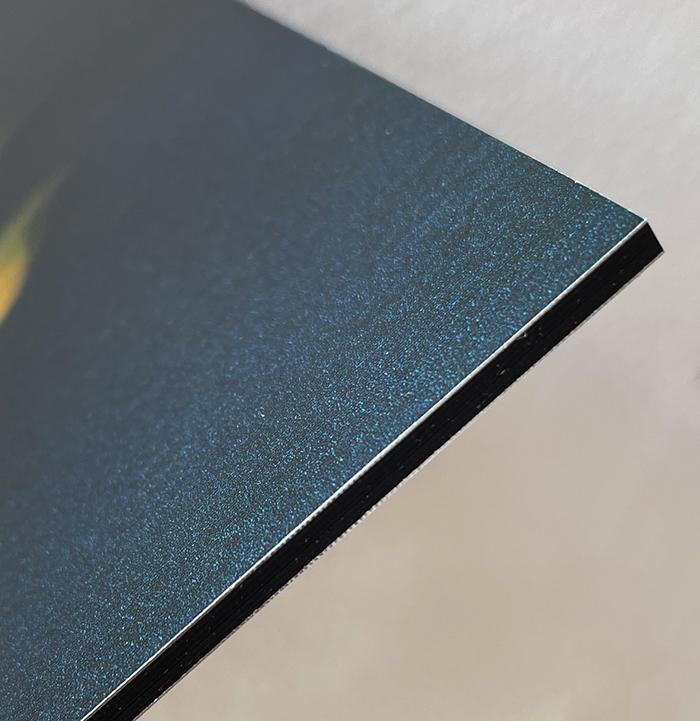 Little Earth Warrior: Hermelin | 20 x 30cm auf Aluminium