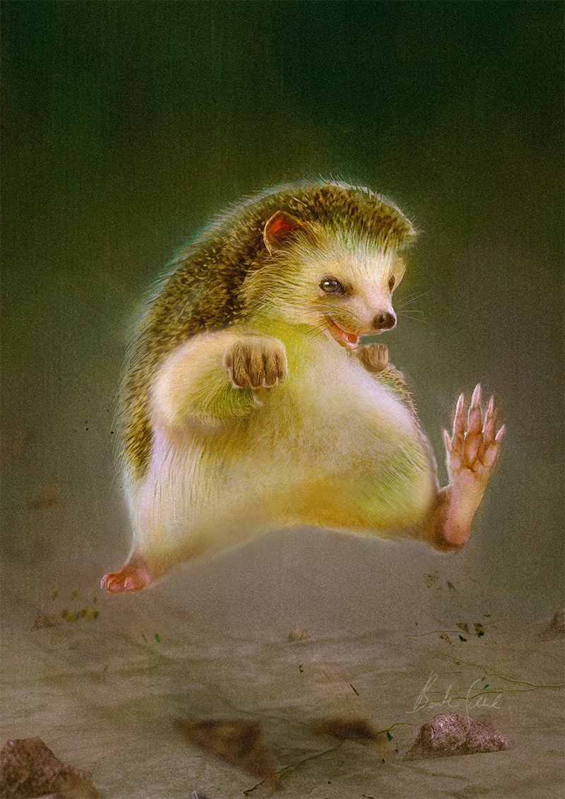 Little Earth Warrior: Hedgehog | 20 x 30cm auf Aluminium